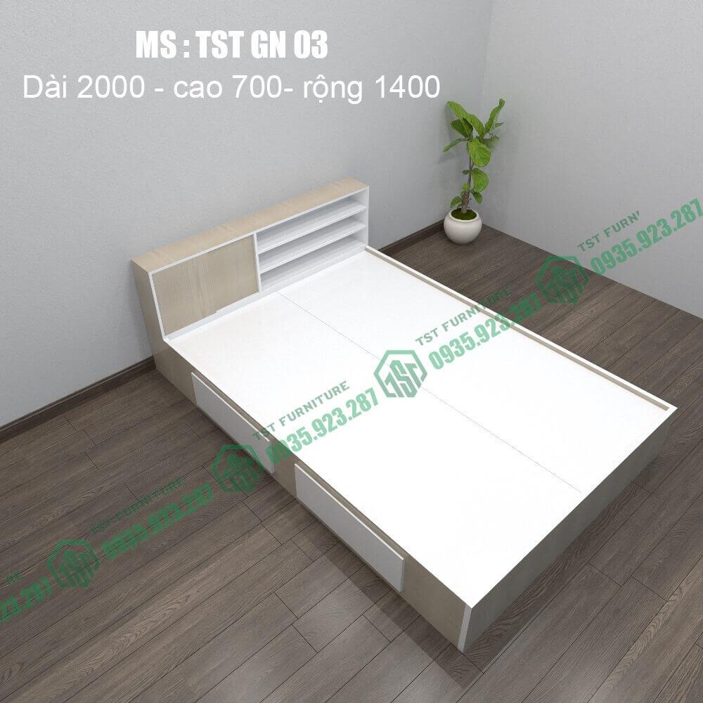 Giường nhựa Đài Loan TSTGN03-1