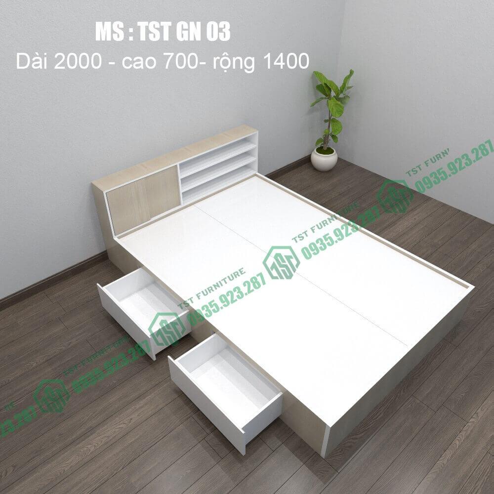 Giường nhựa Đài Loan TSTGN03-2