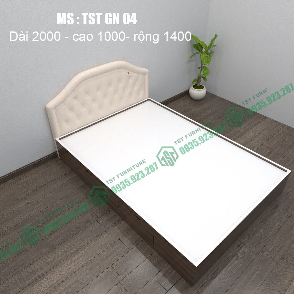 Giường nhựa Đài Loan TSTGN04-1