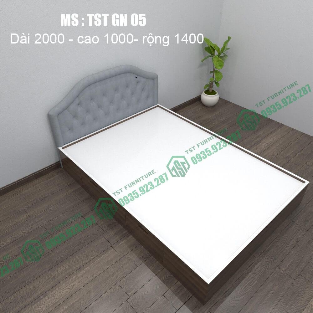 Giường nhựa Đài Loan TSTGN05-1