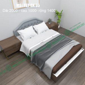 Giường nhựa Đài Loan TSTGN05