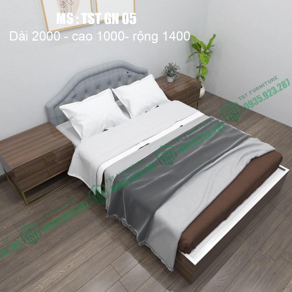 Giường nhựa Đài Loan TSTGN05-3