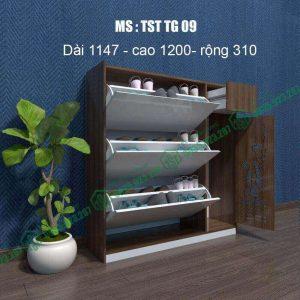 Tủ giày nhựa Đài Loan TST-TG09