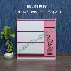 Tủ giày nhựa Đài Loan TST TG09
