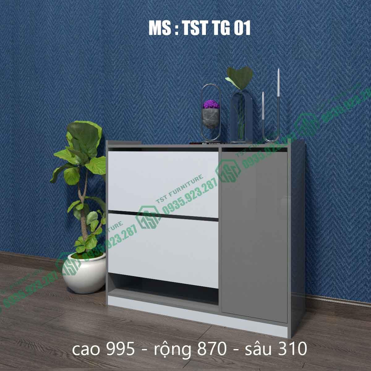 Tủ giày thông minh TSTTG01-2
