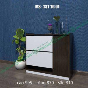 Tủ giày thông minh TSTTG01