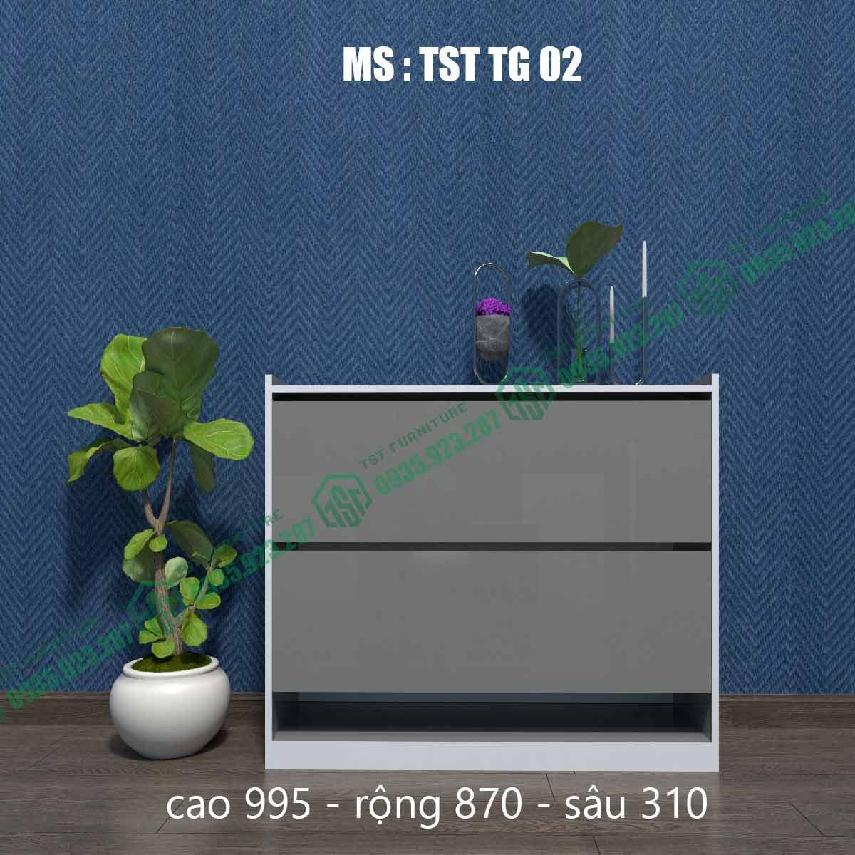 Tủ giày thông minh TSTTG02-1