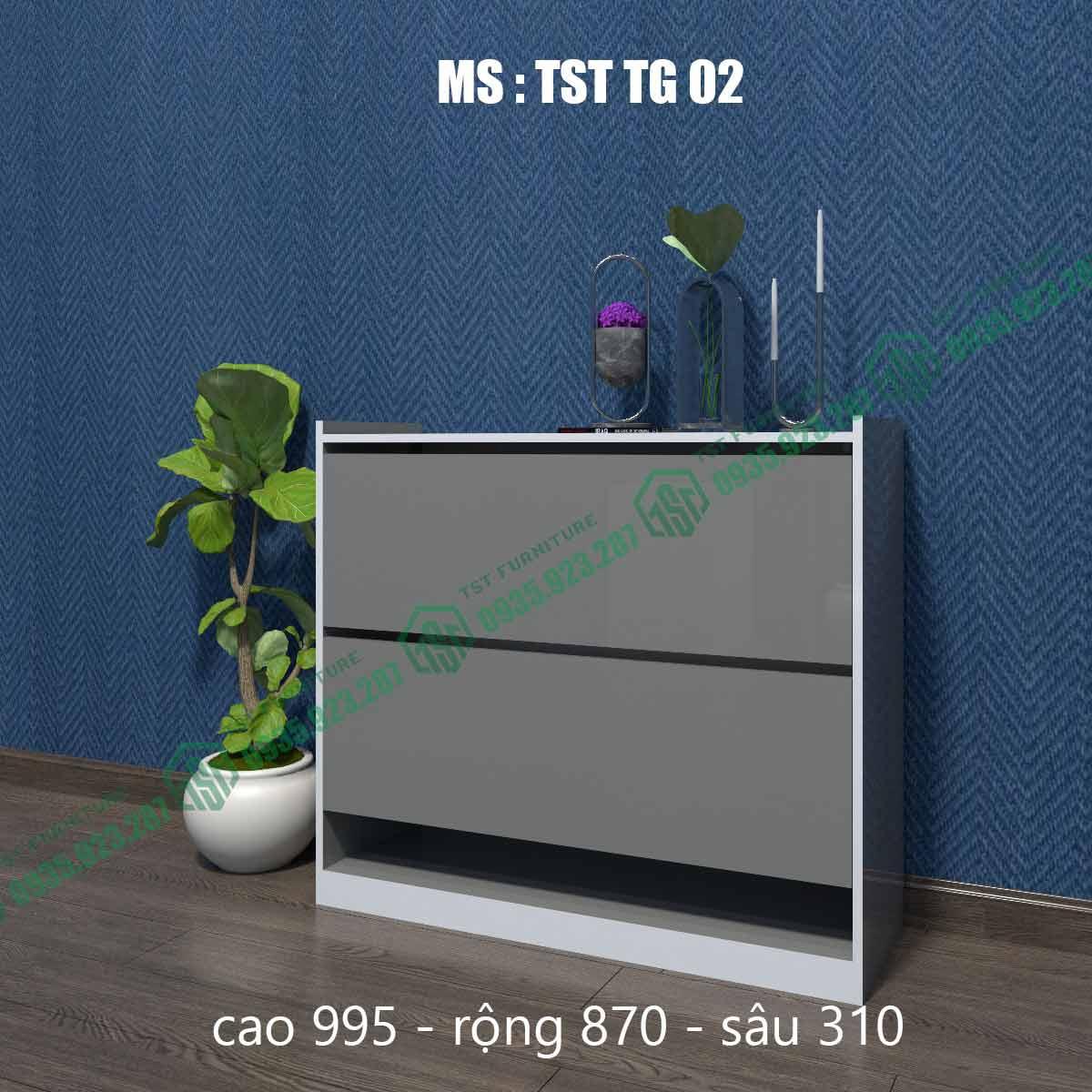 Tủ giày thông minh TSTTG02-2