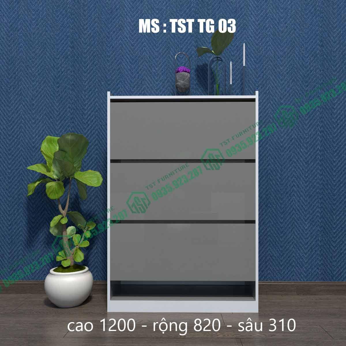 Tủ giày thông minh TSTTG03-1
