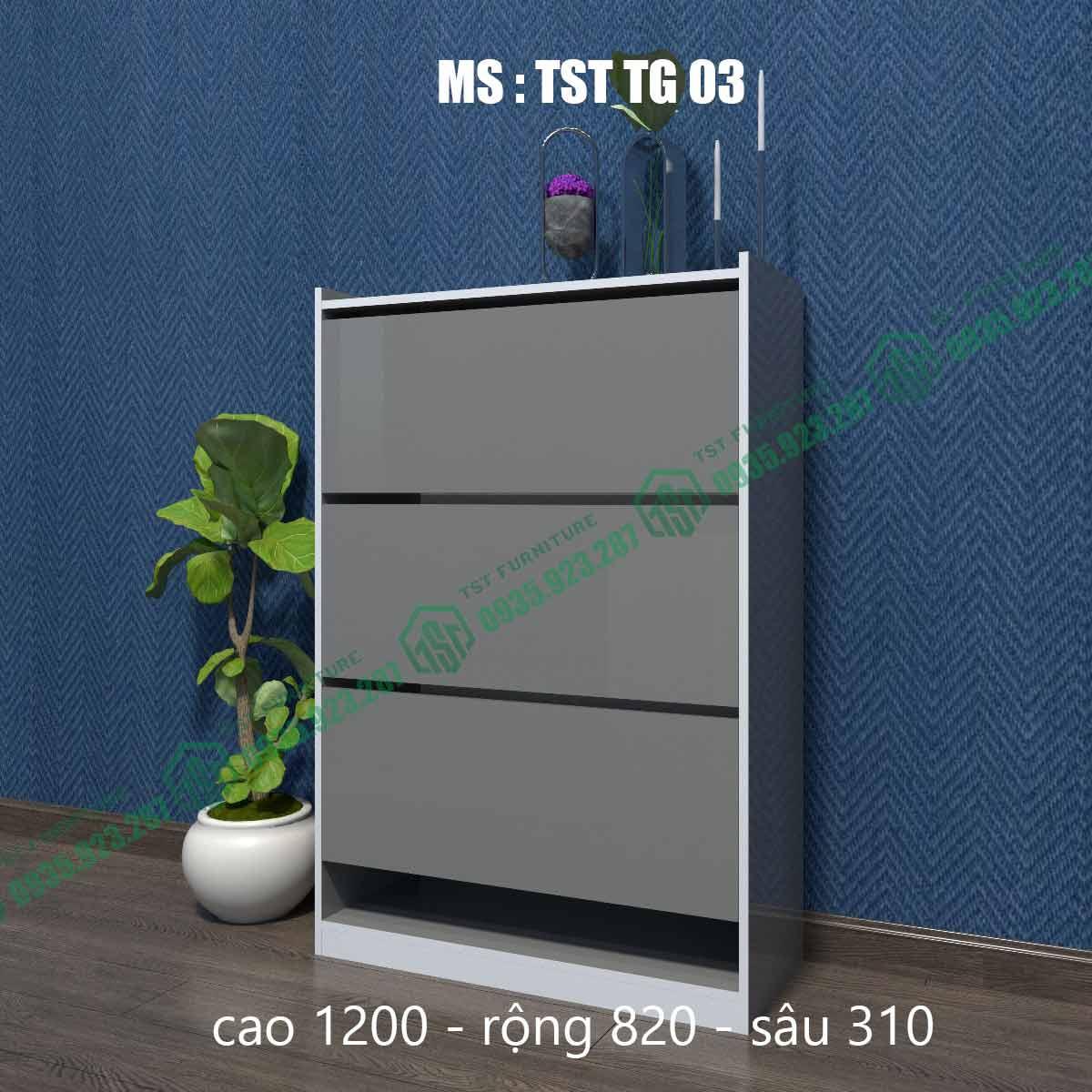 Tủ giày thông minh TSTTG03-2