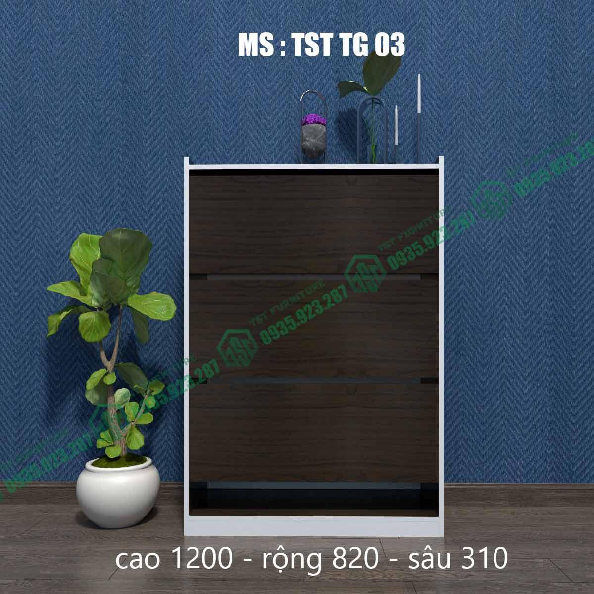 Tủ giày thông minh TSTTG03-3