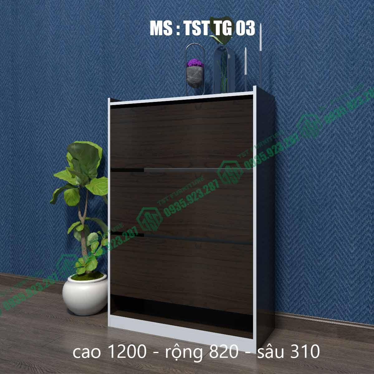 Tủ giày thông minh TSTTG03-4