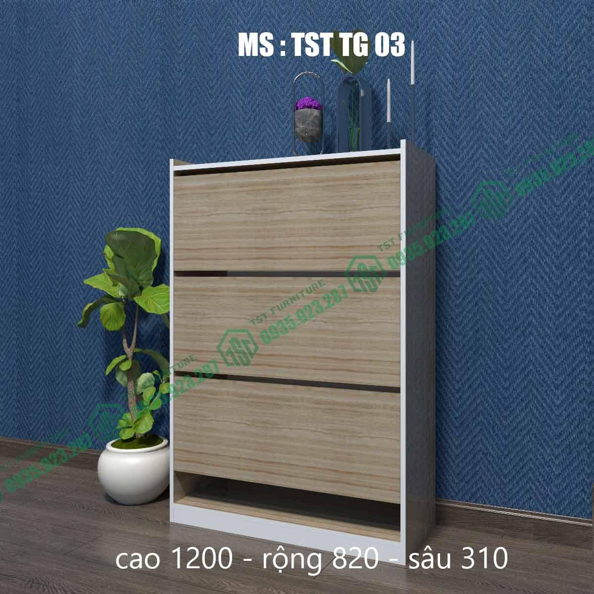 Tủ giày thông minh TSTTG03-6