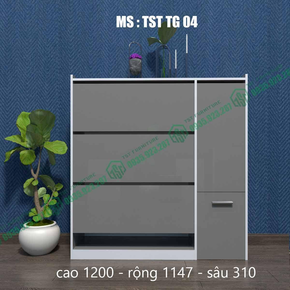 Tủ giày thông minh TSTTG04-2