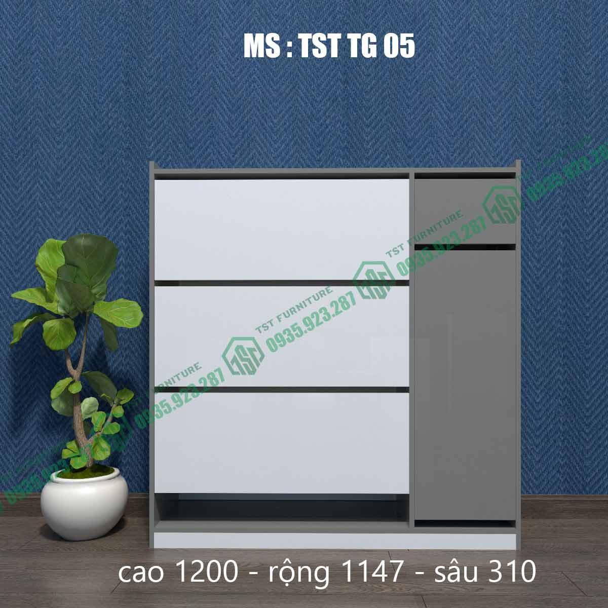 Tủ giày thông minh TSTTG05-1