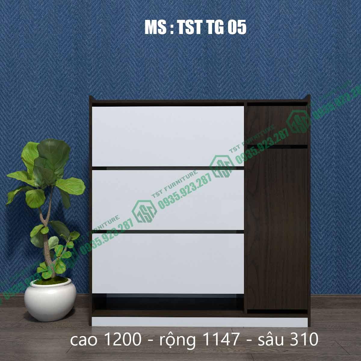 Tủ giày thông minh TSTTG05-3