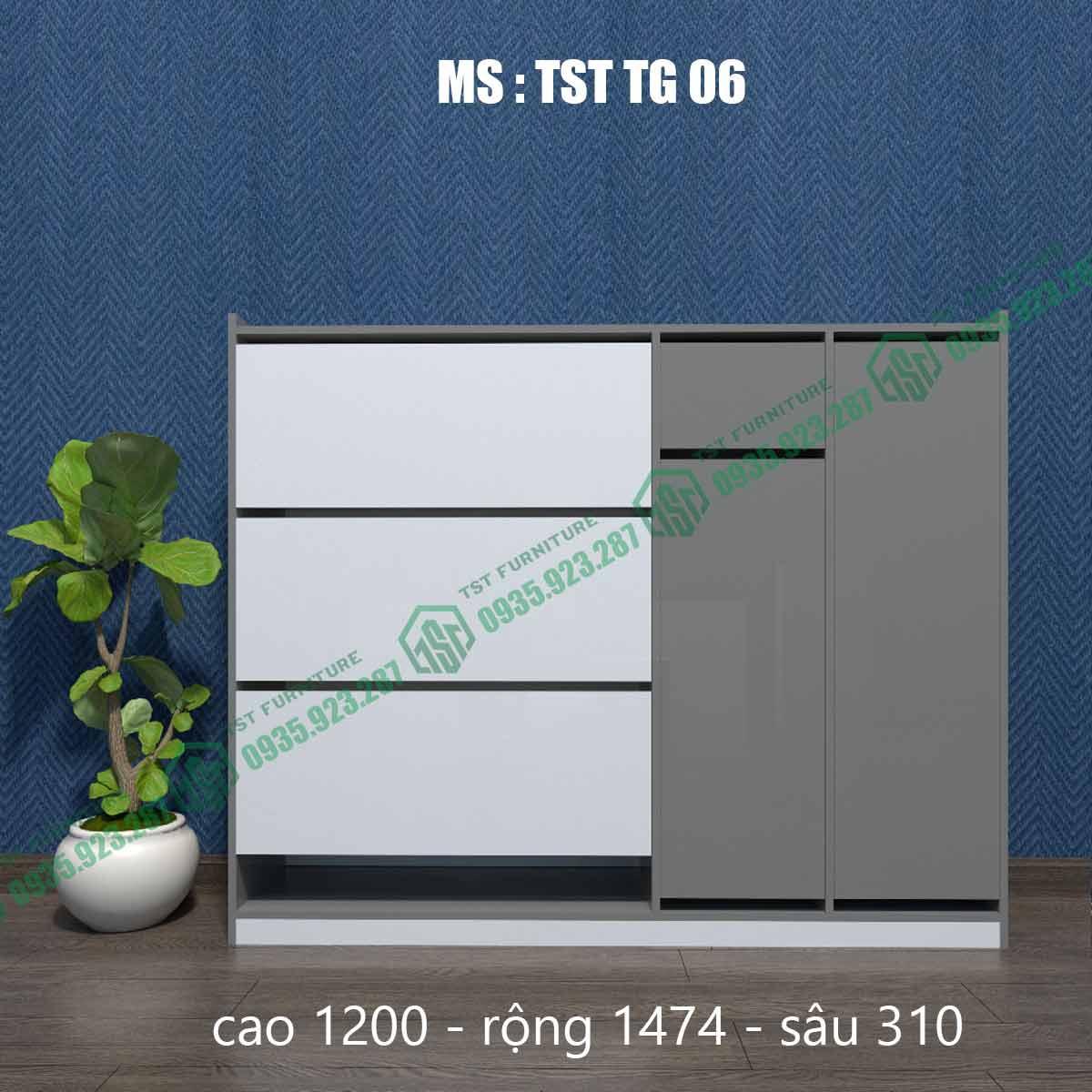 Tủ giày thông minh TSTTG06-1