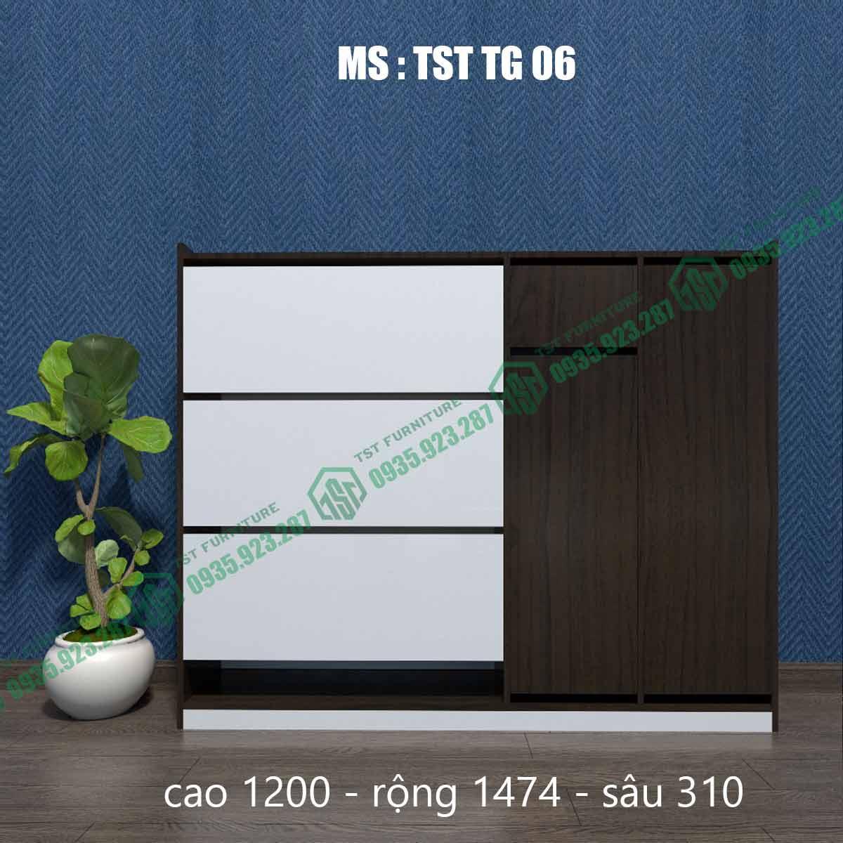 Tủ giày thông minh TSTTG06-3